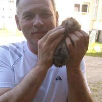 aleksandrs, 59 лет, Телец, Валга