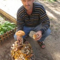Андрей, 55 лет, Телец, Москва