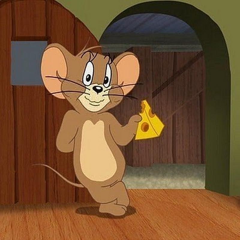все картинки мышонка из том и джерри стругачёв