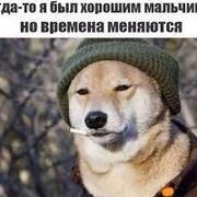 Igot 24 Москва