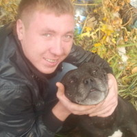 сергей, 35 лет, Дева, Ульяновск