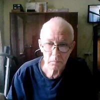 владимир дмитриев, 73 года, Рак, Волжский (Волгоградская обл.)