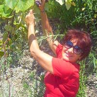 валентина, 63 года, Дева, Мостовской