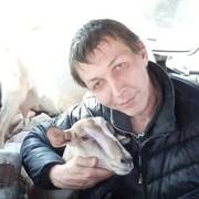 Михаил Александрович 34 года (Телец) Владимир