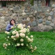 Елена 49 лет (Козерог) Шуя