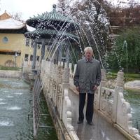 Александр, 71 год, Водолей, Тула