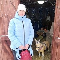 Светлана, 38 лет, Телец, Ульяновск