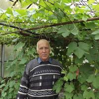 Семён Николаевич, 73 года, Дева, Екатеринбург