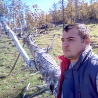 Дима, 34 года, Дева, Ангарск
