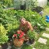 Юлия, 65, г.Котлас