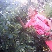 Svetlana, 49, г.Новоаннинский